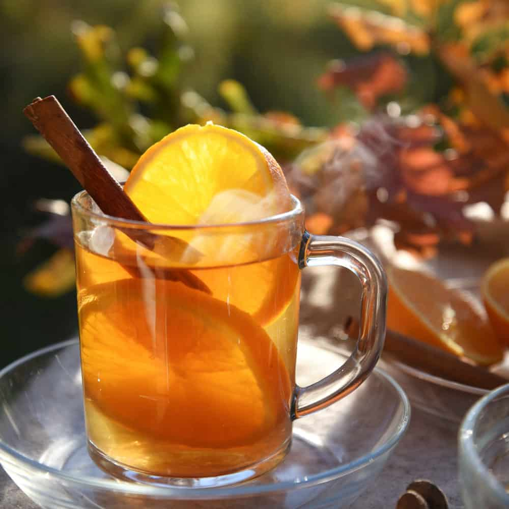 hot tea drink with orange slices and cinnamon teapro