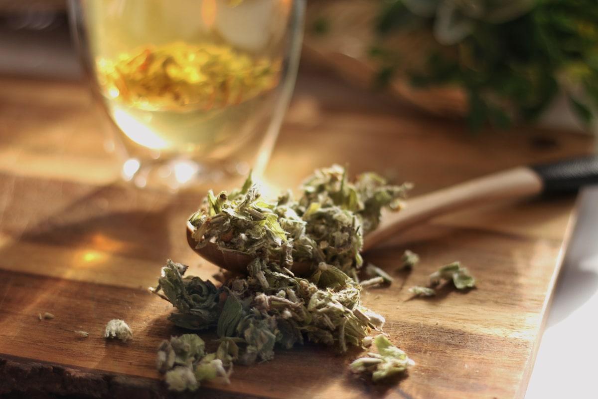 greek mountain tea, herbal tea, teapro
